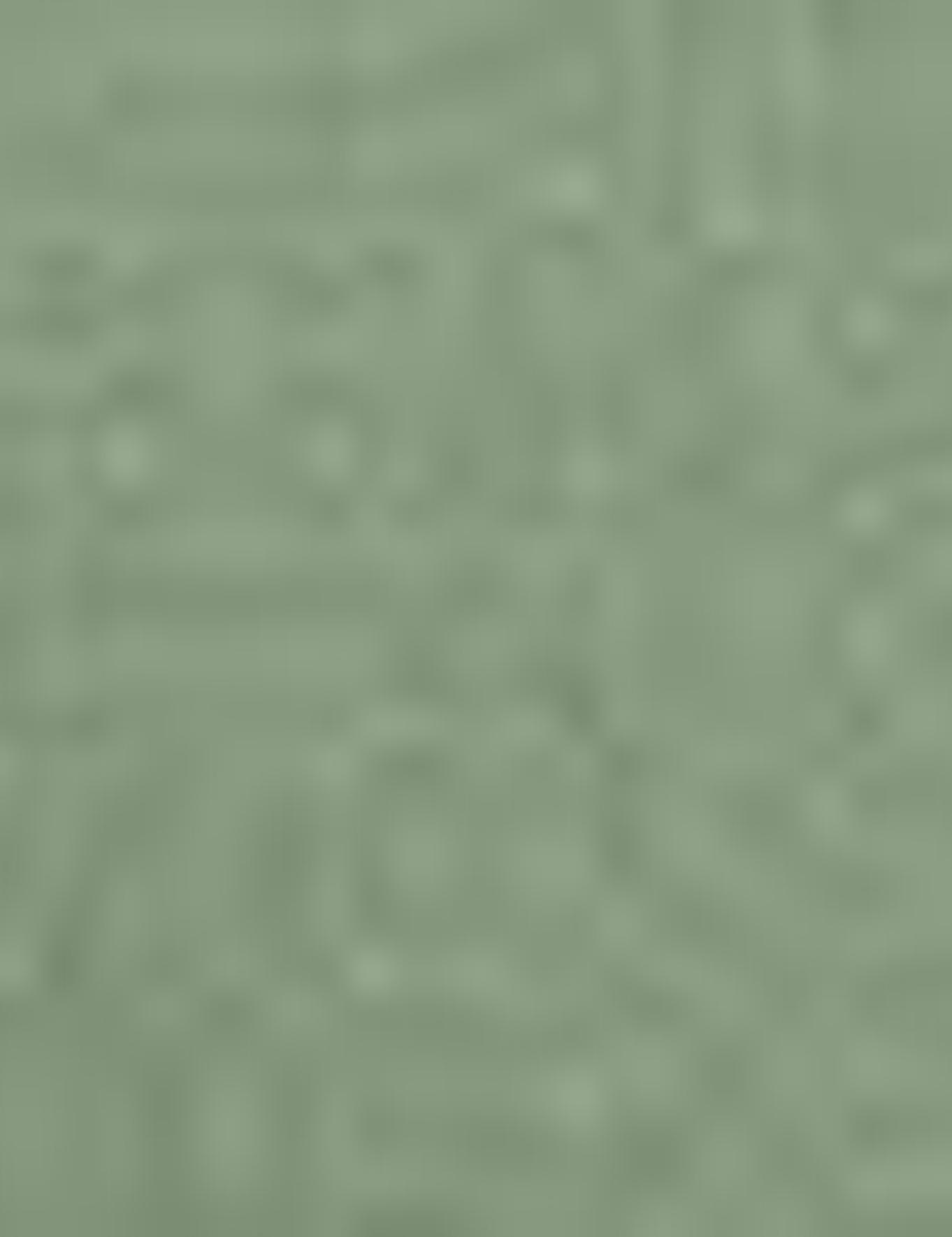 Yeşil Slim Chino