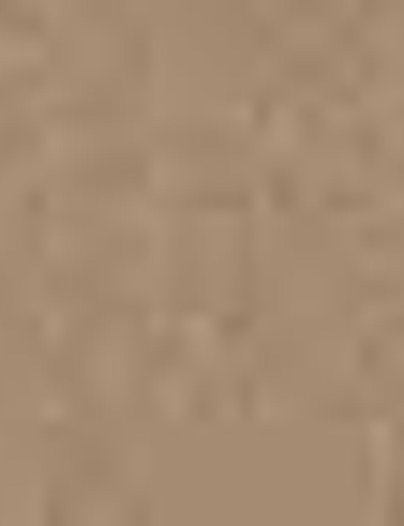 Kahverengi Slim Chino