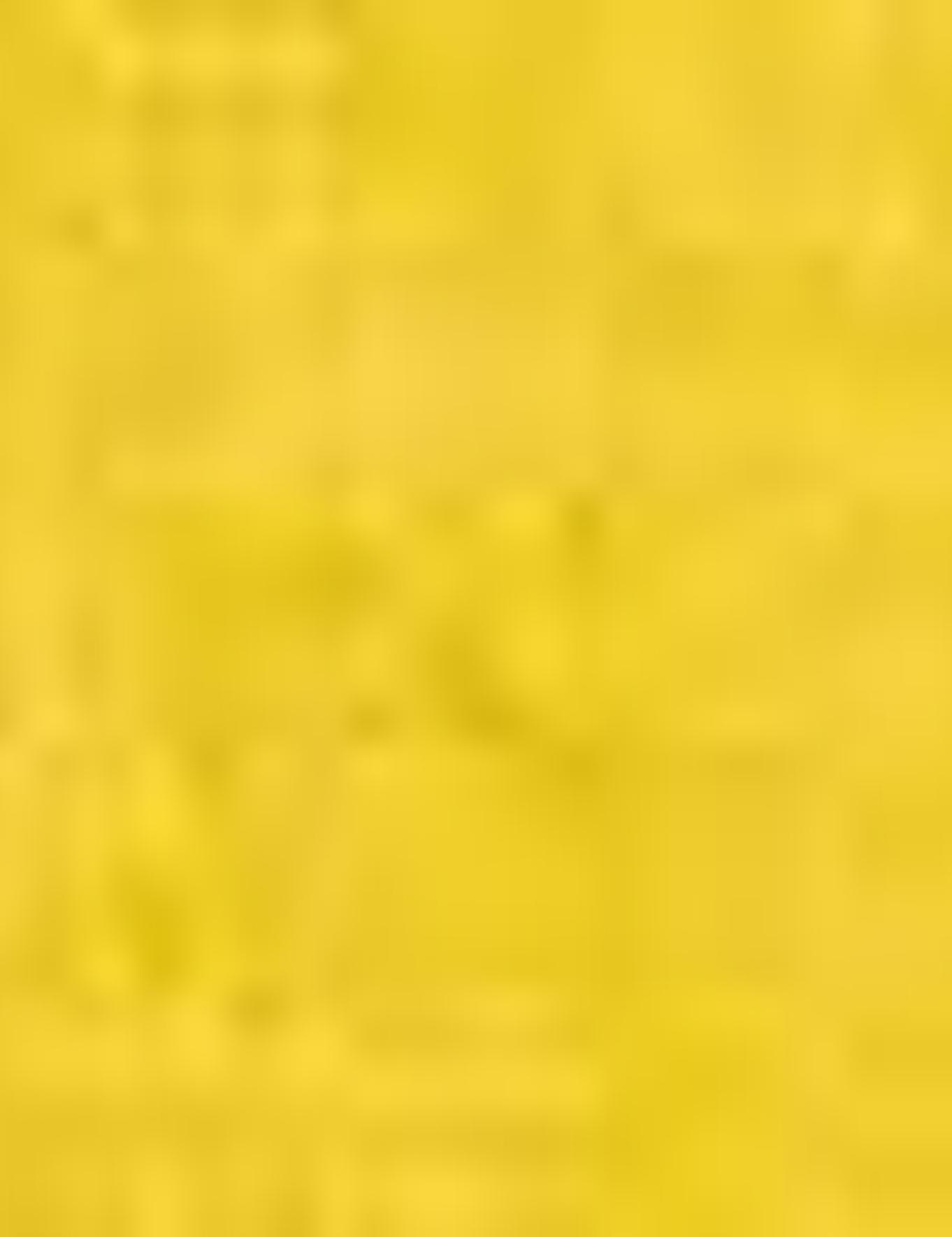 Sarı Triko Kazak