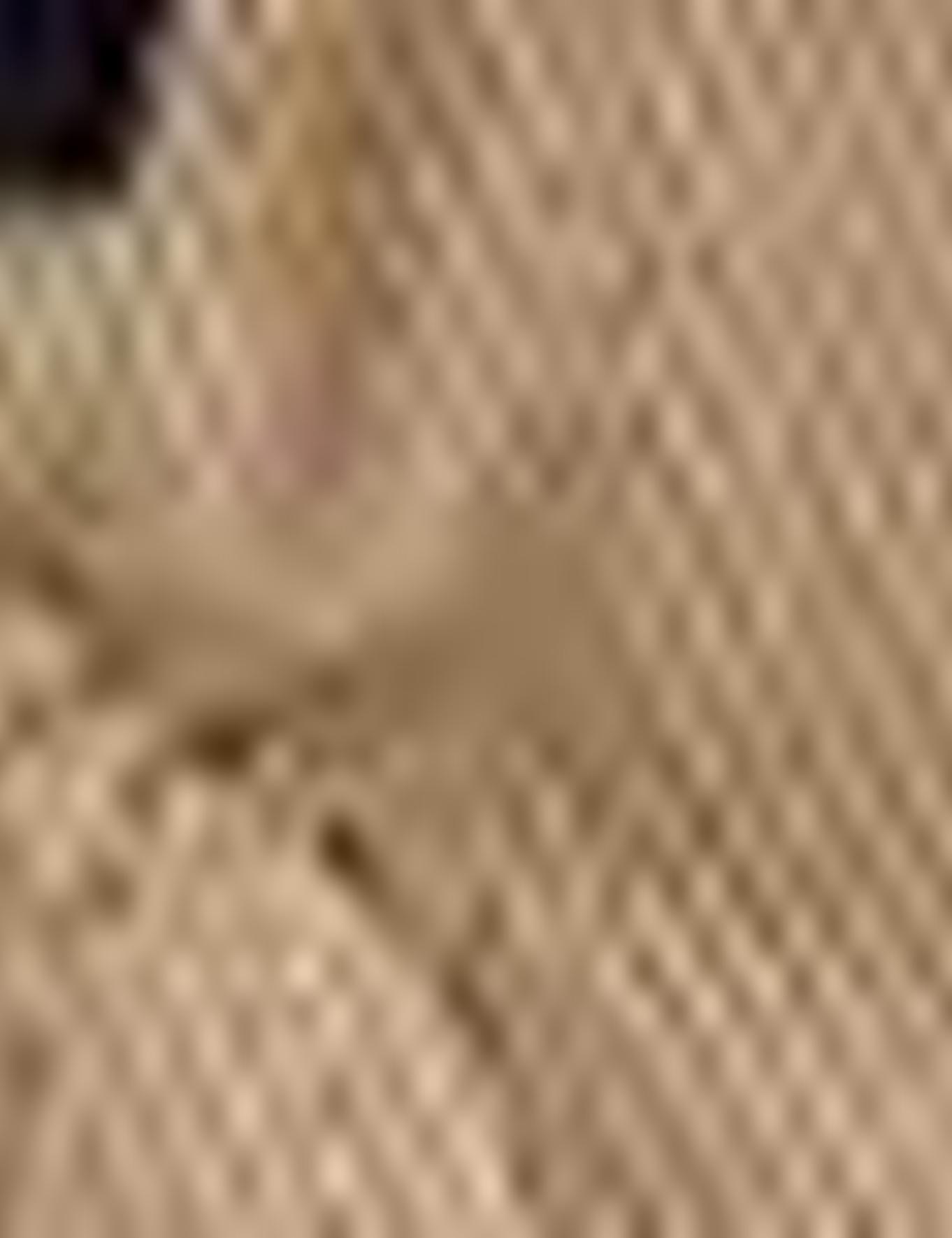 Camel Standart Fit Bermuda Şort